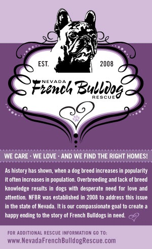 Nevada French Bulldog Rescue